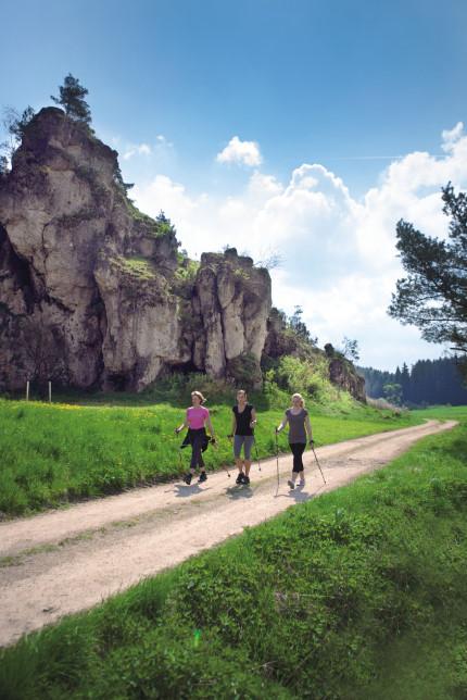 Nordic Walking (Quelle: Kopfwerk, Volker Ehnes)