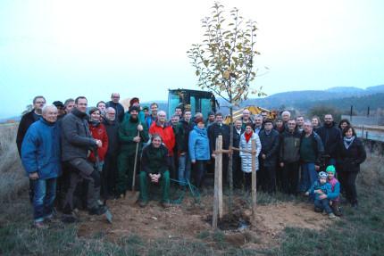 Obstbaumpfleger_2