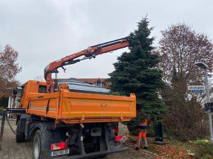 05_Weihnachtsbaum Gerlenhofen_1200-1